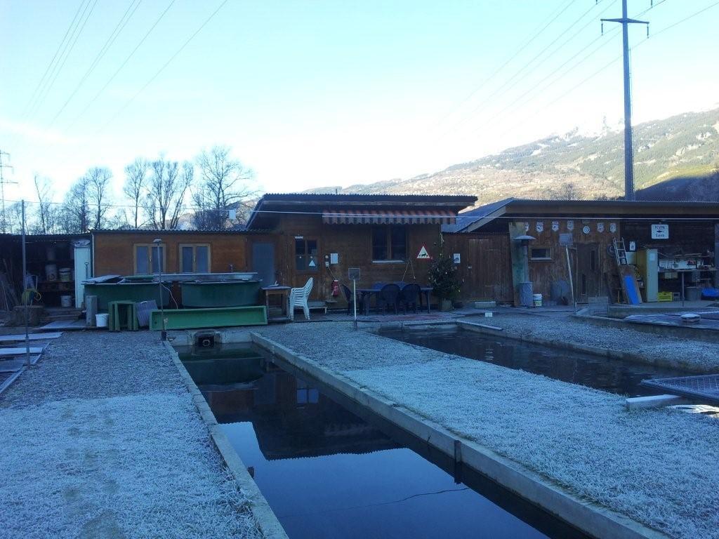 Nos piscicultures